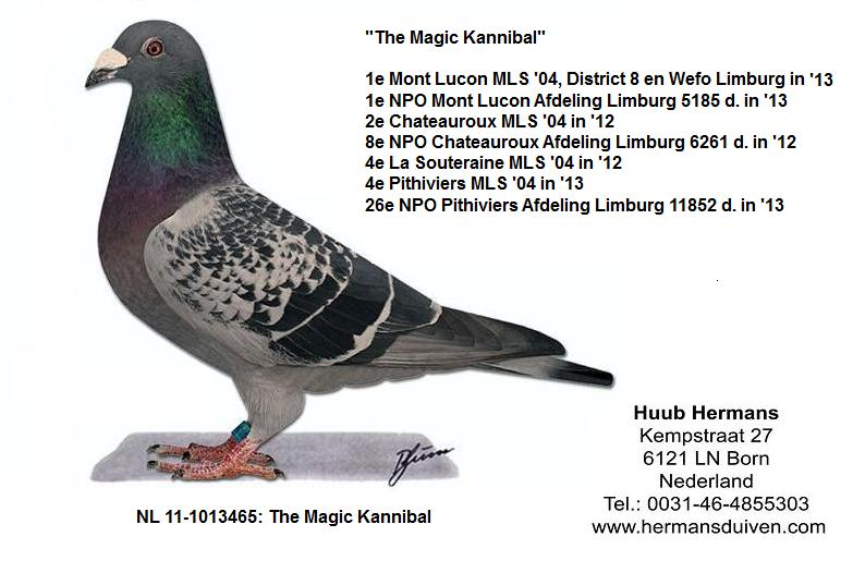 Duif H. Hermans The Magic Kannibal.jpg
